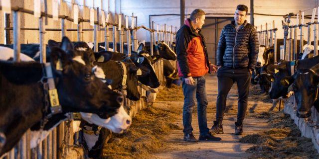 Ферма Лиман 8 - пример за успешен бизнес с мисия за чиста храна