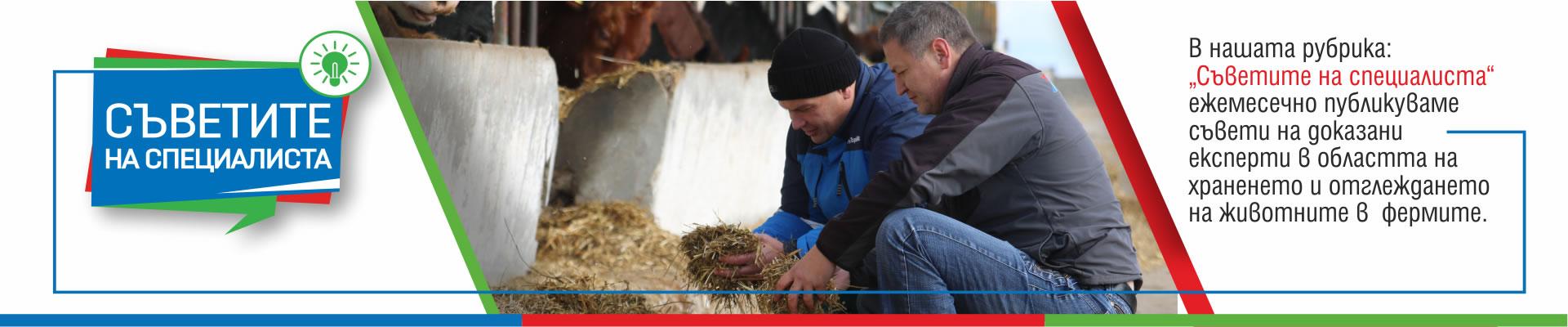 В нашата рубрика Съветите на специалиста ежемесечно публикуваме съвети на доказани експерти в областта на храненето и отглеждането на животните във фермите